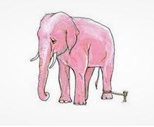 tethered elephant
